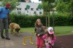 canisterapie-na-zahrade-006